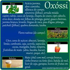 Infográfico_Oxóssi_Ervas-Frutas-Flores-Bebidas