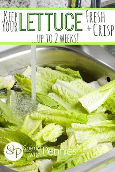 How to Keep Your Lettuce Fresh and Crisp! I've been doing this for years and it works perfectly!