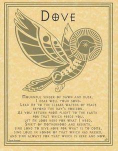 Spirit Totem Animals:  Dove.