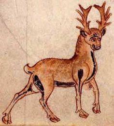 Medieval Bestiary : Stag Gallery