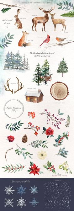 A Woodland Christmas Graphic Set - Illustrations