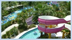 1000 images about boca raton coconut cove waterpark on - Palm beach gardens recreation center ...