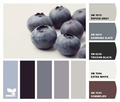 """From 7.7.12 """"Blueberry tones"""" Design Seeds to paint colors from Chip It! by Sherwin-Williams"""