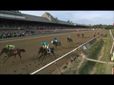 REPLAY: American Pharoah Upset by Keen Ice in 2015 Travers Stakes
