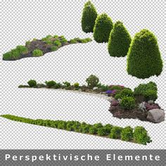 7_Freigestellte-Perspektivische-Garten-Elemente* Tree Photoshop, Photoshop Images, Photoshop Design, Photoshop Elements, Photoshop Rendering, Landscape Design Plans, Landscape Architecture, Tree Render, Tree Sketches