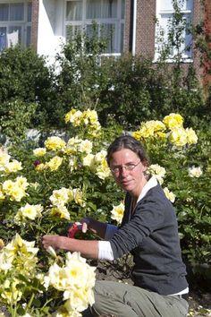 Captivating Why Rose Gardening Is So Addictive Ideas. Stupefying Why Rose Gardening Is So Addictive Ideas. Bodybuilding Recipes, My Secret Garden, Go Outside, Garden Projects, Garden Inspiration, Garden Plants, Gardening Tips, Planting Flowers, Garden Design