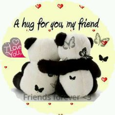 Cute Friendship Quotes, Friendship Messages, Good Morning Hug, Morning Love Quotes, Hug Day Images, Special Friend Quotes, Hug Pictures, Love You Friend, My Friend