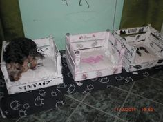 Toddler Bed, Shabby, Youtube, Vintage, Home Decor, Birthday Cakes, Repurpose, Animales, Child Bed