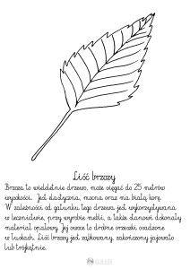 nyírfalevél - Template Educational Crafts, Garden Tools, Montessori, Doodle, Lion, Teacher, Template, Polish, Paintings