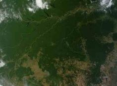 Amazon deforestation up by 28% in one year – but most done 'illegally'.