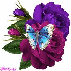 rosas e butterfly Butterfly Gif, Butterfly Kisses, Butterfly Wallpaper, Beautiful Butterflies, Beautiful Roses, Beautiful Gif, Rosas Gif, Images Gif, Glitter Graphics