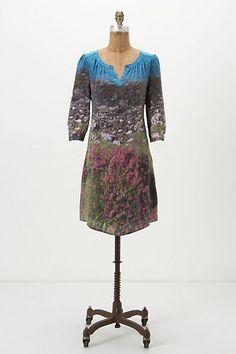 Isle of Skye Shift Dress at Antrho.  dressologyhq.blogspot.com
