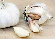 Garlic has long been used as a natural health remedy to treat many diseases. Read on to know the 10 garlic health benefits. Cold Home Remedies, Home Remedies For Hair, Herbal Remedies, Natural Cures, Natural Health, Natural Treatments, Garlic Breath, Garlic Uses, Raw Garlic