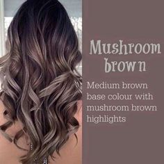 Mushroom Brown Higlight Hair color ideas 2017