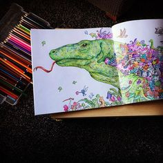 Extreme colouring, first attempt and not yet finished. #animorphia #kerbyrosanes #relaxing #colouringbook