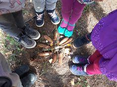 Gra Terenowa dla dzieci | Naturalna mandala | Zabawy w naturze, w lesie |