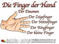 The hand german vocabulary grammar - Worldpin. German Grammar, German Words, German Resources, Study German, Deutsch Language, German Translation, German Language Learning, Kindergarten Lessons, Learn English