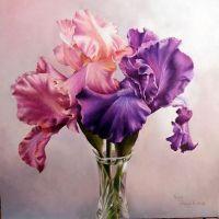 Three IrisesPattern Packet