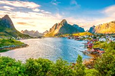 Reine is a fishing port located south-west of the town of Moskenes, in Lofoten Islands in Norway. It is located on the island of Moskenesøya, above the Arctic Circle, about 300 kilometers south-west from the city of Tromsø Napoleon Hill, Wallpaper Free Download, Wallpaper Downloads, Nature Wallpaper, Hd Wallpaper, Destinations, Retro Images, Landscape Walls, Lofoten