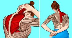 A stiff neck and tight shoulders are very well known issues for many of us. The … A stiff neck Neck And Shoulder Stretches, Neck And Shoulder Pain, Stiff Neck Stretches, Upper Back Stretches, Tight Neck, Tight Shoulders, Shoulder Pain Relief, Neck Pain Relief, Neck Exercises