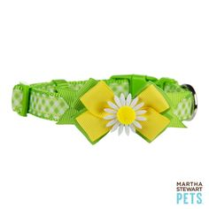 Have you got your green for St. Patricks Day? Shop #MarthaStewartPets collars for some flair!