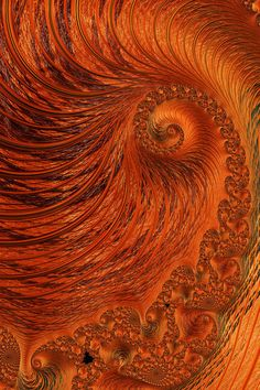 """""""Orange Lily Fractal"""" Digital Art by Steve Purnell buy now as poster, art print and greeting card.."""