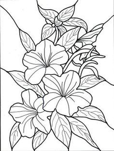 hawaiian flower Colouring Pages (page 2)