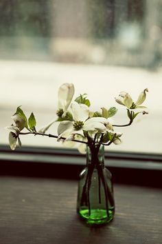 Spring | Emily Thompson Flowers