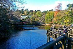 Tokyo 아노카시라공원