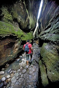 Carnarvon gorge, QLD. 18 of the best day walks in Australia - Australian Geographic Outdoor