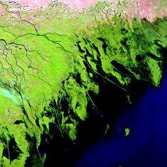 The Volga Delta in Russia