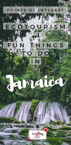 #jamaica #ochorios #jamaicanfood | Points of Interest: Ecotourism and Fun Things To Do in Jamaica | One of the main points of interest in Jamaica is their natural wonders.  Jamaica is rich in flora and fauna cradled in the beautiful landscapes and beaches. Exploring this beautiful island was truly a privilege. I've learned how the locals try to protect their beloved country during our visit.