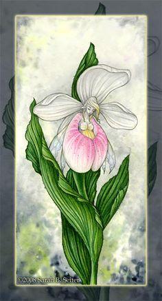 60dbdec49 lady slipper fairy Kobold, Fairy Land, Fairy Tales, Elfen, Womens Slippers,