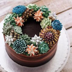 Ivenoven bäckt Kuchen in Form von Pflanzen - these succulent cakes are perfect for those who love Beautiful Cakes, Amazing Cakes, Mini Cakes, Cupcake Cakes, Cactus Cake, Happy Birthday To Us, Buttercream Flowers, Buttercream Frosting, Cake Images
