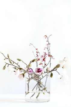 spring blooms b i r a m b i . c o m // BIRAMBI The post spring blooms appeared first on Diy Flowers. Amazing Flowers, Fresh Flowers, Beautiful Flowers, White Flowers, Exotic Flowers, Tropical Flowers, Yellow Roses, Diy Flowers, Pink White