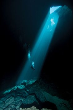21 Spectacularly Beautiful Underwater Caves to Scuba Dive Full post at… Under The Water, Under The Sea, Underwater Caves, Underwater Photos, Underwater Photography, Underwater Creatures, Diving Australia, Australia Travel, South Australia