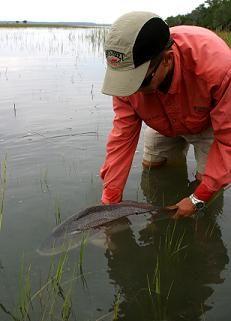 Fly Fishing Instruction  - Beaufort SC