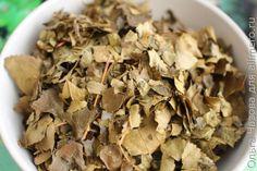 Ферментация листьев яблони: делаем вкусный яблоневый чай Smoothie Drinks, Smoothie Recipes, Food Technology, Cooking Recipes, Healthy Recipes, Yams, Preserves, Tea, Chocolate