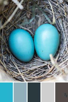 ZJ Colour Palette 335 #colourpalette #colourinspiration