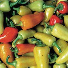 Pepper, Santa Fe Grande | Seed Savers Exchange