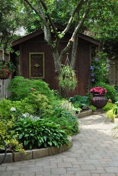Have to landscape around the shed, want it woody or foresty like, perhaps a mulch path.