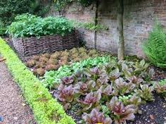 Veg parterre Green Garden, French Country, Plants, Image, Country French, Planters, Plant, Planting