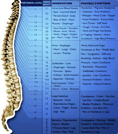 Understanding your spine and how it corresponds with the body! Family 1st Chiropractic & Acupuncture 7316 Matthews-Mint Hill Rd Mint Hill, NC 28227 (704) 545-7700 familyfirstchiro@bellsouth.net minthillchiropractor.com https://www.facebook.com/pages/Family-1st-Chiropractic-Acupuncture/137938573024097