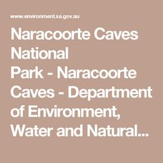 Naracoorte Caves National Park-Naracoorte Caves - Department of Environment, Water and Natural Resources
