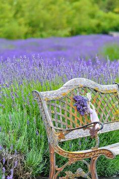 Patina Moon: A Summer of Lavender