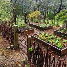 Garden one day