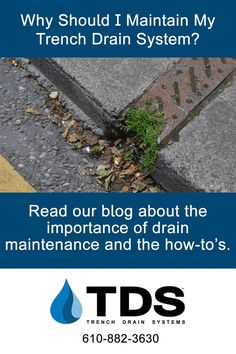 Cleaning out your landscape drainage a few times a year will help in more ways than one. Read our blog to learn more. #trenchdrainsystems #trenchdrains #cleandrains #diy #homeimprovement #drainmaintenance Trench Drain Systems, Landscape Drainage, Drainage Solutions, Drain Cleaner, Cleaning, Times, Plants, Blog, Diy