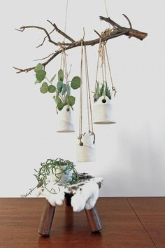 Object of Desire: Rustic Planters from a British Potter in LA Hanging Ceramic Pot by Tracy Wilkinson of TW Workshop Vertical Wall Planters, Rustic Planters, Herb Planters, Ceramic Planters, Hanging Planters, Planter Ideas, Planter Pots, Concrete Planters, Diy Hanging