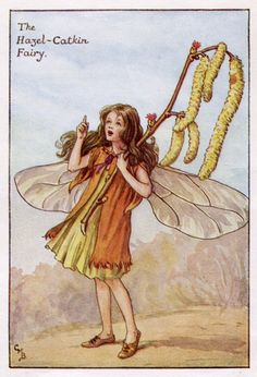 Hazel katje Flower Fairy Vintage Print, c.1927 Cicely Mary Barker-boekillustratie plaat