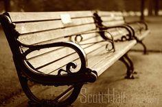 Park Bench Sepia @ Piedmont Park Atlanta  by ashartphotography